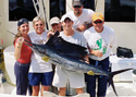 Old Hat Fishing Charters welcomes another Sailfish aboard