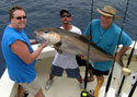 This huge Amberjack was caught while wreck fishing off Hollywood Beach