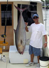 This 100 lb Amberjack was caught on a fishing charter off Miami Beach