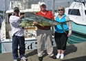 Fishing charters off the coast of Miami produce Mahi Mahi.